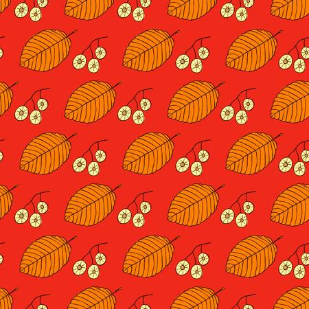 Hojas de otoño y semillas sobre fondo rojo. Las hojas y frutos de olmo están dibujados a mano. Patrón sin costuras botánico.