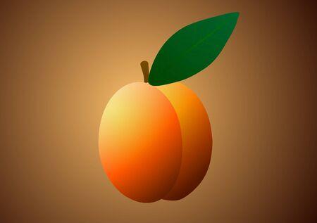 Vector illustration. Apricot on orange background.
