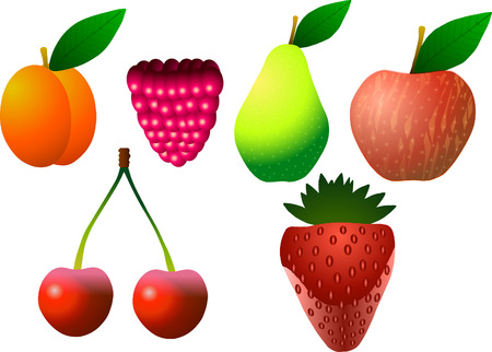 Vector illustration. Fruits. Apricot, raspberry, pear, apple, cherry and strawberry.