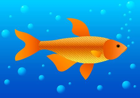 Vector illustration. Gold fish in water with bubbles.