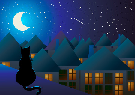 Vector illustration. The cat sits on the roof and watching the city at night and the moon.