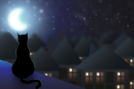 The cat sits on the roof and watching the city at night and the moon.