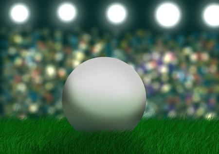 spectators: Soccer ball on the stadium with spectators.