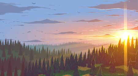 Vector background. Fir forest in hilly mountains with meadows at sunset.