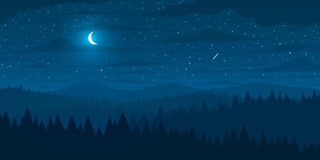 Vector background. Fir forest in hilly mountains with meadows at night.
