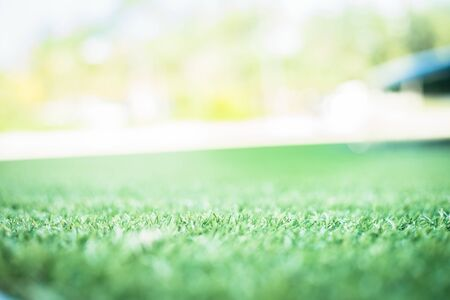 green grass. background texture. fresh spring green grass. Imitation of the sun Banque d'images - 129202800
