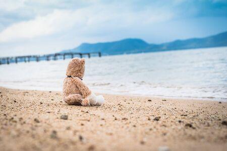 Teddy bear sit alone at the seashore.