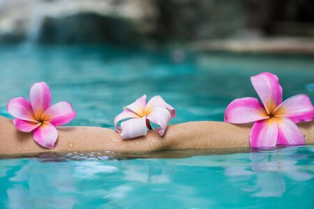hands over the pool with flowers. Tropical flowers frangipani plumeria, Leelawadee floating in the water. The spa pool. Peace and tranquility. Spa concept Stok Fotoğraf