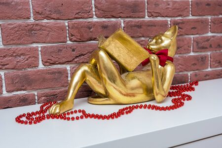 Golden cat reading a book lies on a white surface with red beads, living room interior.