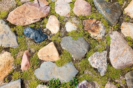 Stenen pad. tuinpad van stenen met mos begroeid