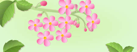 chinese new year card: Banner with a branch of cherry blossoms with Paper cut. Paper art style.Leaves and flowers on a green background. For use as logos on cards, in printing, posters, invitations, web design and other purposes. Illustration