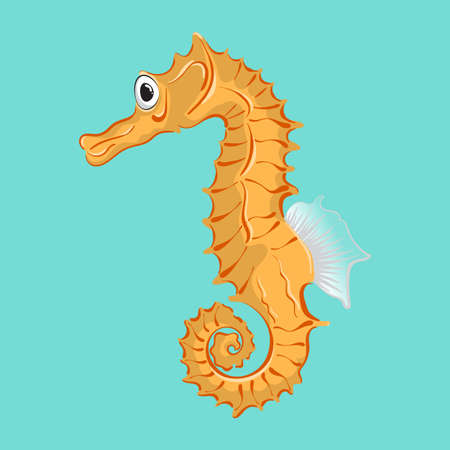 Vector seahorse for use  on cards, in printing, posters, invitations, web design and other purposes. Illustration