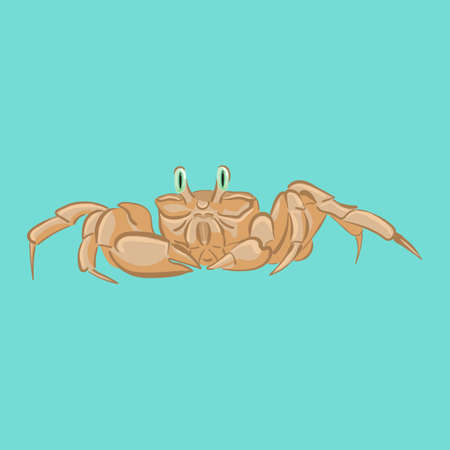 Vector crab for use  on cards, in printing, posters, invitations, web design and other purposes. Illustration