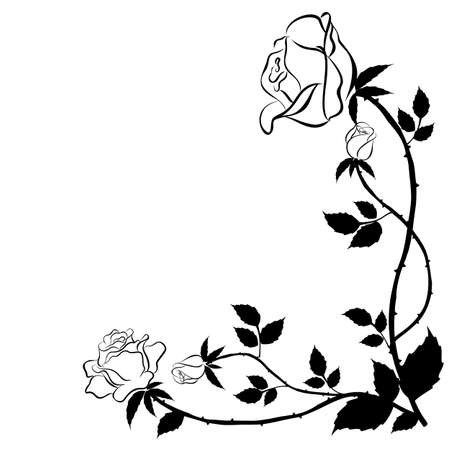 lay: Black rose in graphic style for used for wallpaper; printing on the packaging paper; textiles; tattoo. Illustration