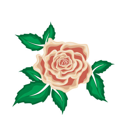 Tea rose in leaves in cartoon style for used for wallpaper; printing on the packaging paper; textiles. Illustration
