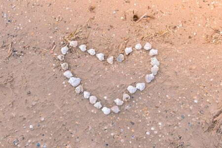Heart from sea shells on sandy sea and ocean beach. Big heart made of mussels. 版權商用圖片