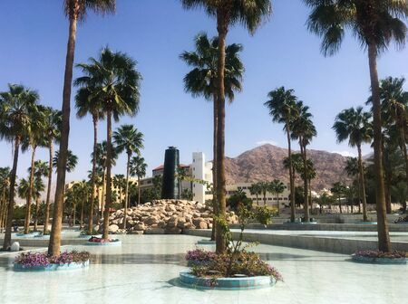 Palm trees around the fountain against the backdrop of a mosque. Arab country. Jordan, Aqaba. Stock Photo - 137010211