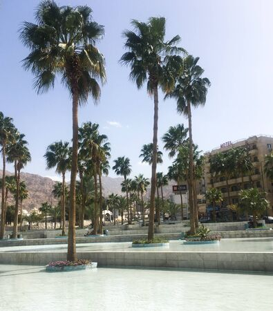 Palm trees around the fountain against the backdrop of a hotel. Arab country. Jordan, Aqaba.