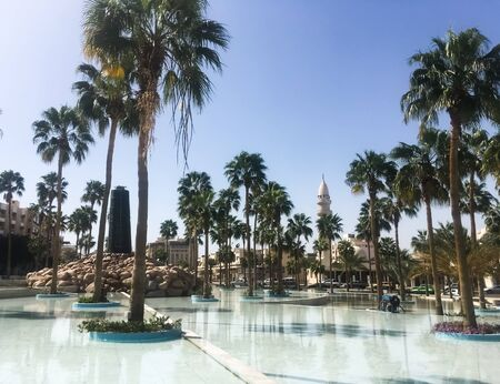 Palm trees around the fountain against the backdrop of a mosque. Arab country. Jordan, Aqaba.