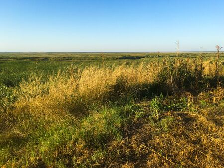 Field. There is a road through the field. Bright blue sky. Autumn Russian landscape.