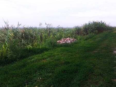 A pile of broken red bricks lies on the green grass among the fields near the road. Russian field.