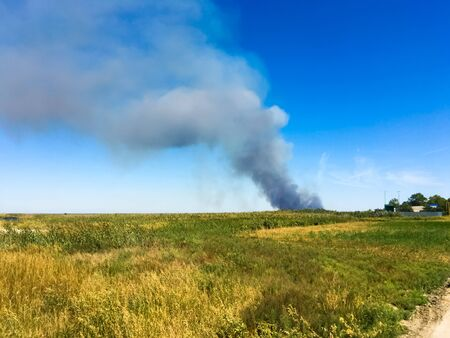 Smoke on the horizon. A fire is burning in the field. Autumn landscape. Sunny day.