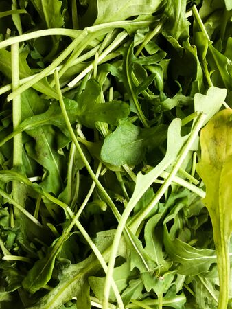Background from fresh leaves of arugula salad. Vegetarian food. Green natural background. 写真素材