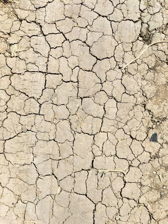 Dry ground in the cracks. Global environmental issue. Drought. 版權商用圖片