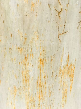 Rusty metal surface. Old metal wall. Grunge background. Abstract red and orange background. 写真素材