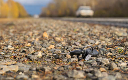 A bunch of keys lying on the road