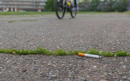 thrown Smoking cigarette butt lie on the asphalt path