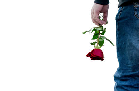 red rose flower in the hand of the guy