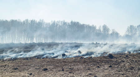 fire, flames and a lot of smoke in an agricultural field