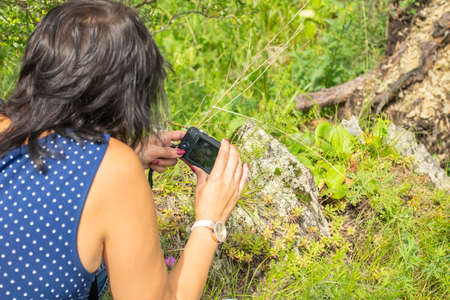 a girl takes photos of a macro object, flowers, insects in nature, leaning the camera close to the grass on the ground