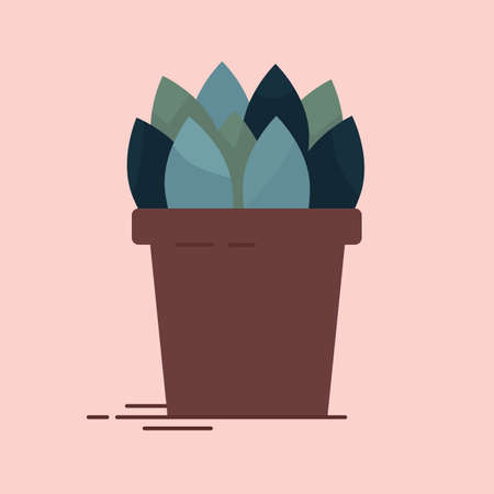 Vector collection of an indoor flower in pot. Home decorative plant, isolated element.