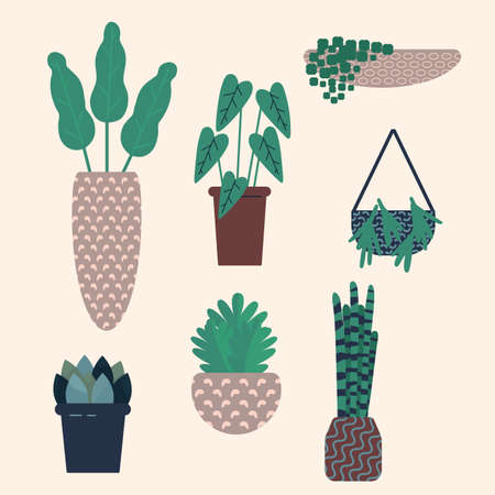 Vector illustration with trendy home plants, urban jungle concept. Vector Illustration