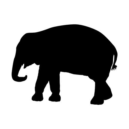 Silhouette of an elephant on a white background. Vector illustration 向量圖像
