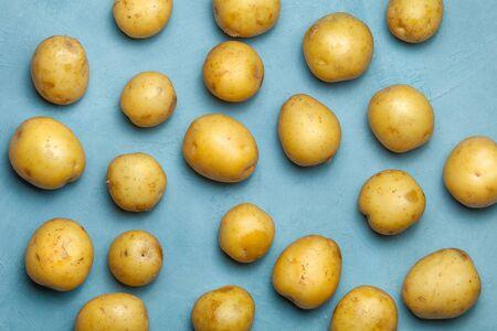 Raw potato tubers won blue background. Harvest