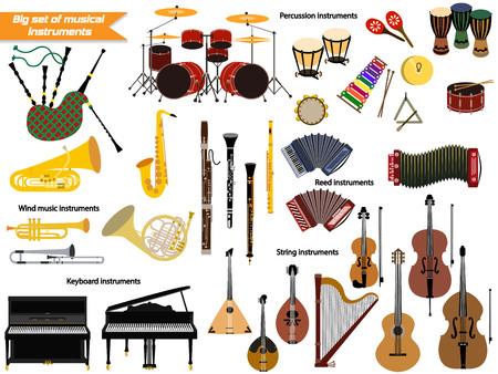 contrabass: Set of music instruments. Illustration