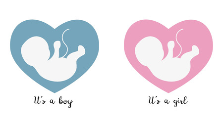 Ultrasonography baby icons on the heart with text. Vector illustration. Illustration