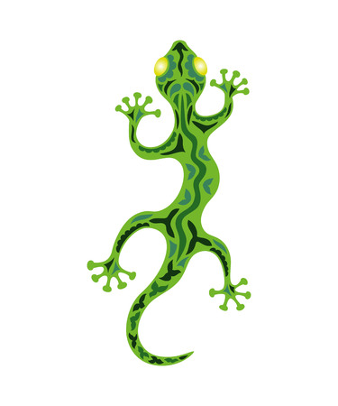 A lizard on the white background. Illustration