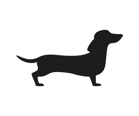 Silhouette of the dachshund on the white background. Ilustrace