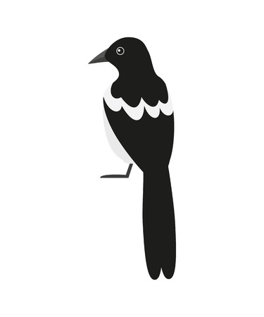 Magpie icon on the white background. Vector illustration. Illustration