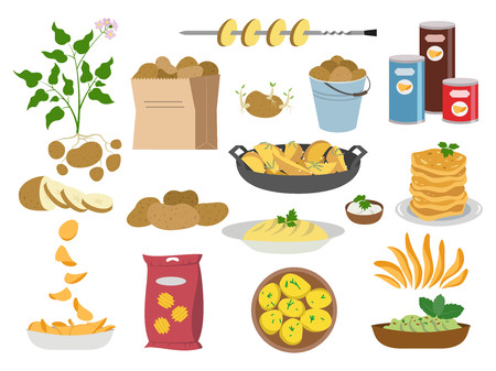 Big set icons of potato dishes on white background. Vector illustration.