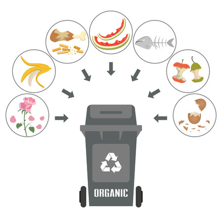 Container with organic trash on white background. Ecology and recycle concept. Vector Illustration. Illustration