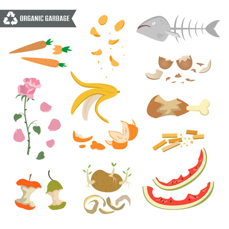 Organic trash on white background. Ecology and recycle concept. Vector Illustration.