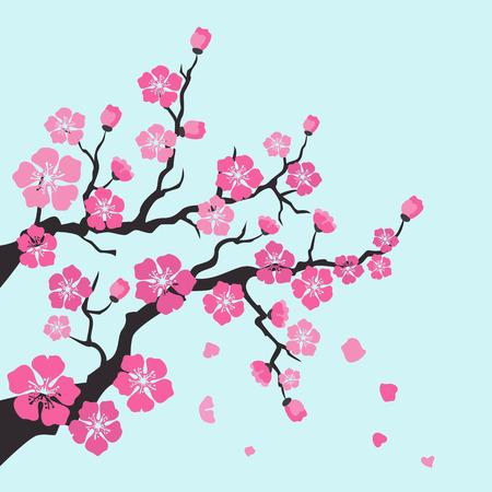 Sakura blossom on blue background. Vector Illustration.