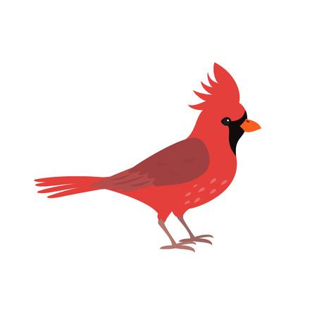 Northern red cardinal icon on white background. Vector illustration. Vektorové ilustrace