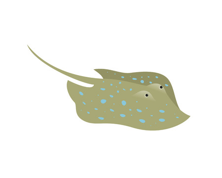 Cartoon stingray fish on white background. Vector illustration.
