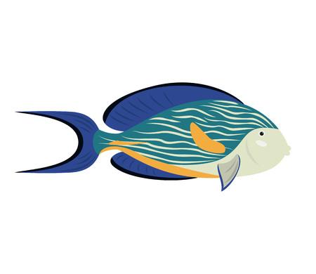 Cartoon fish surgeon icon on white background. Vector illustration. Illustration